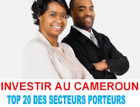 INVESTIR AU CAMEROUN : IDÉES D'ENTREPRISES