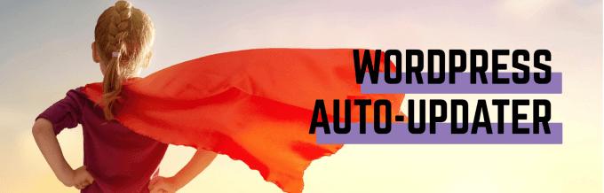 1607489074 718 Les meilleurs plugins pour garder WordPress a jour automatiquement