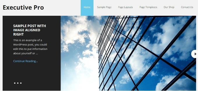 1607608603 844 Comment ameliorer votre site Web WordPress avec les conceptions de
