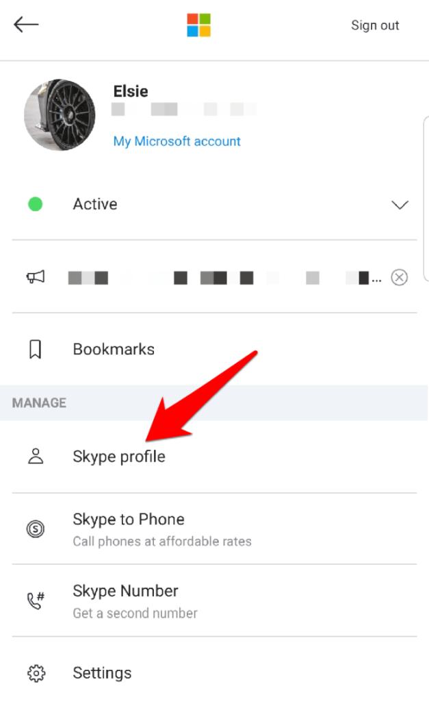 Pseudo Skype