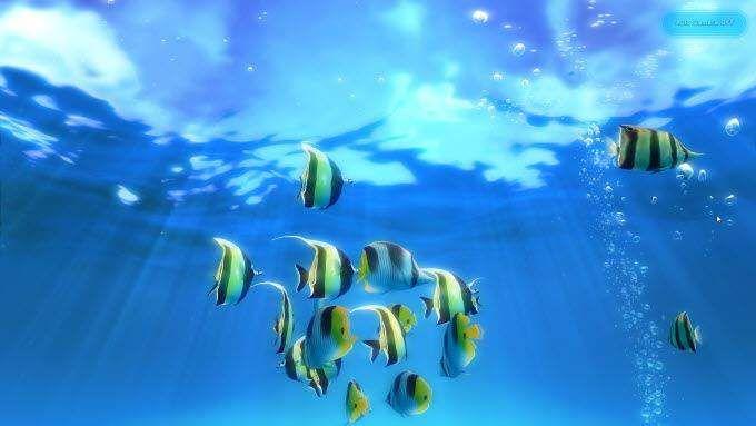 1608034890 389 7 fonds decran animes incroyables pour Windows 10 pour transformer