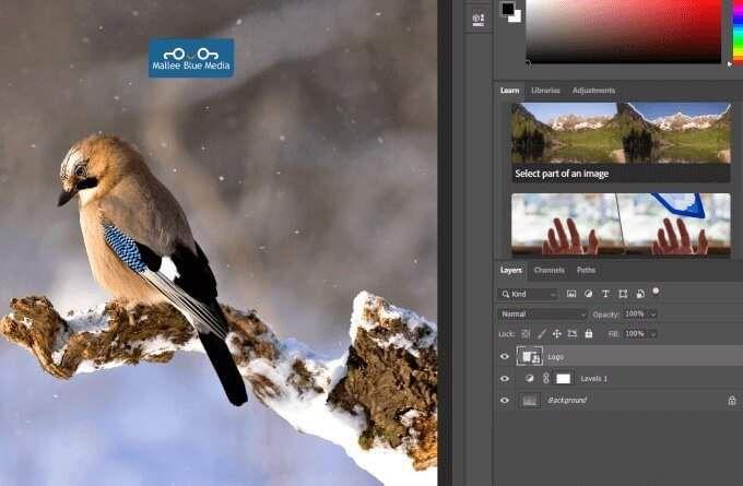 1608304023 756 Comment redimensionner combiner et fusionner des calques dans Photoshop