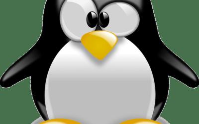 Linux Live USB Creator vous permet de créer un système d'exploitation Linux à la volée