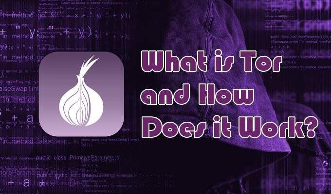Tor vs VPN Devriez vous en utiliser un ou les